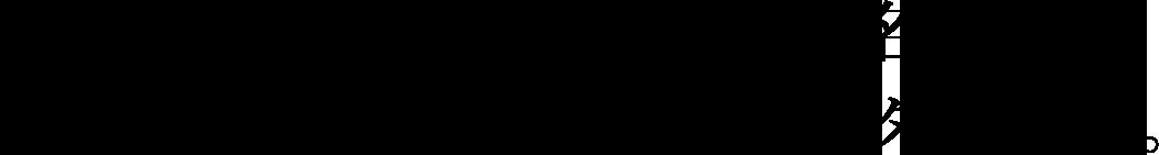 ジニエシリーズの隠れた名品、その快適な履き心地にリピーター続出。