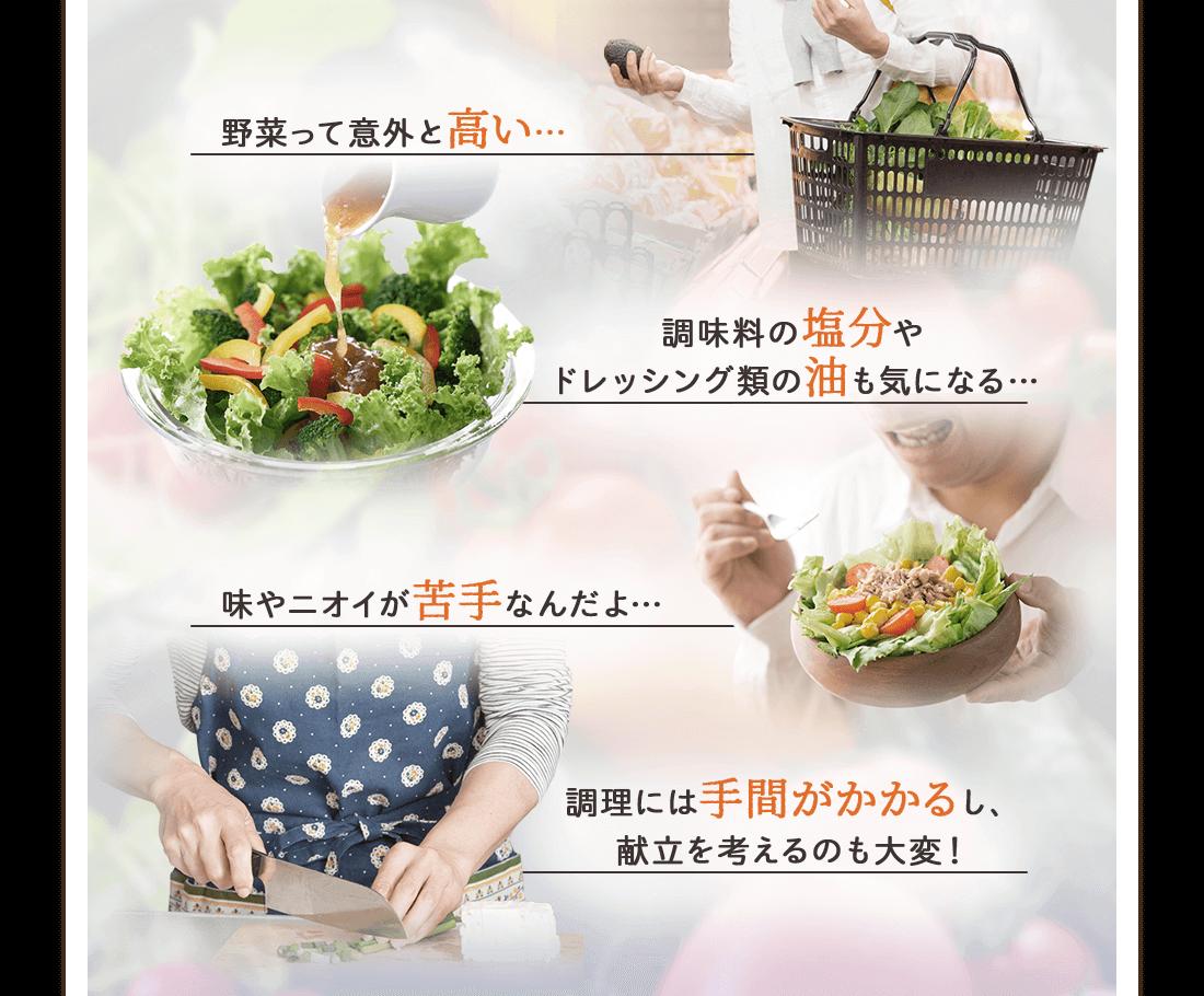 野菜を食べたいけれど、野菜って意外と高い…調味料の塩分やドレッシング類の油も気になる…味やニオイが苦手なんだよ…調理には手間がかかるし献立を考えるのも大変!