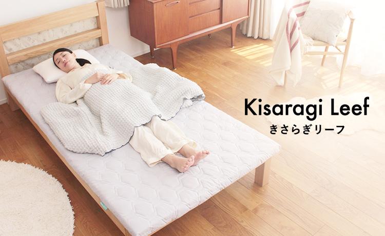 Kisaragi Leef きさらぎリーフ