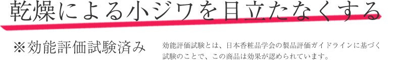 乾燥による小ジワを目立たなくする。※効能評価試験済み。効能評価試験とは、日本香粧品学会の製品評価ガイドラインに基づく 試験のことで、この商品は効果が認められています。