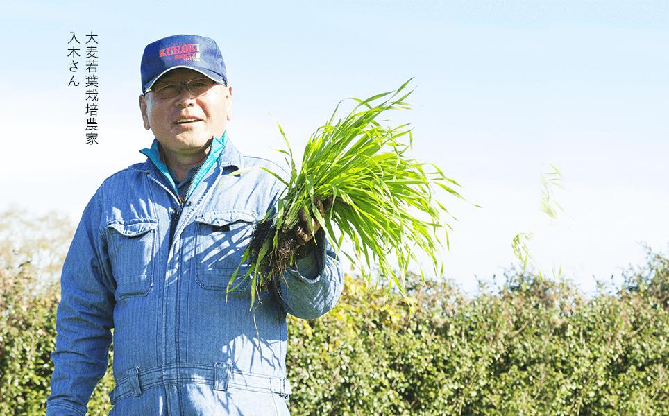 大麦若葉栽培農家 入木さん