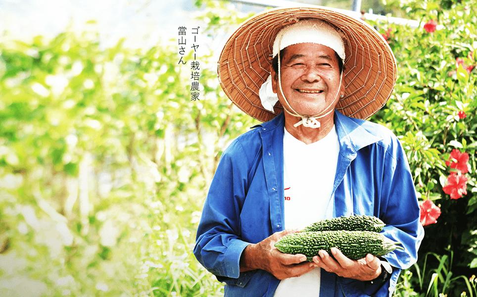 ゴーヤー栽培農家 當山さん