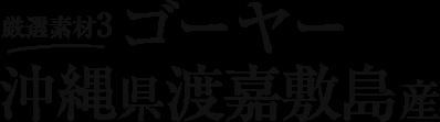 厳選素材3 ゴーヤー 沖縄県渡嘉敷島産
